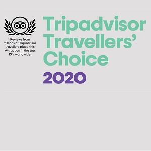 Tripadvisor Style Advisor Twins